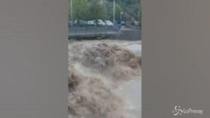 Nubifragio in Liguria, esondato il torrente Petronio