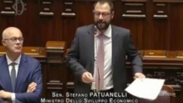 """Ex Ilva, Patuanelli: """"Serve responsabilità di tutta la politica"""""""