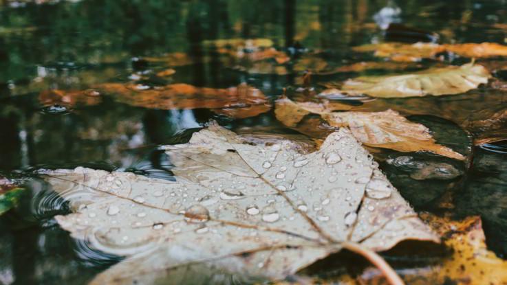 Il meteo del 21 e 22 novembre: pausa asciutta ma venerdì tornano le piogge