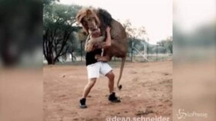 Dean Schneider, l'abbraccio con il leone del 'domatore' svizzero