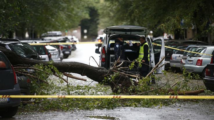 Maltempo: Napoli, albero cade e uccide un uomo