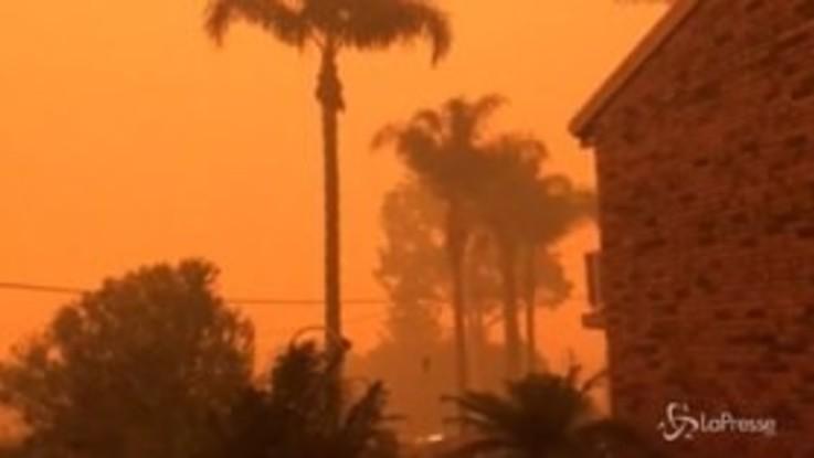 Incendi in Australia: il cielo pieno di fumo diventa arancio