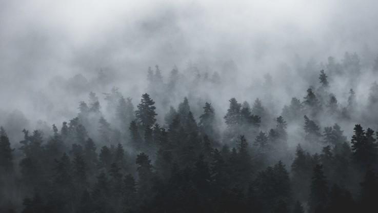 Le previsioni del 7 e 8 gennaio: rischio nebbia al Nord