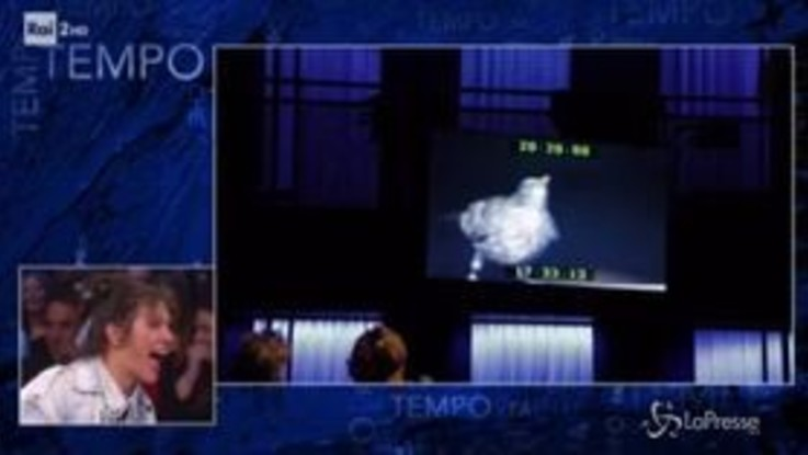 'Che Tempo che fa': entra un merlo in studio, Elisa scappa terrorizzata