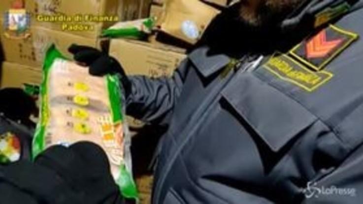 Peste suina, sequestrate a Padova 10 tonnellate di carne cinese