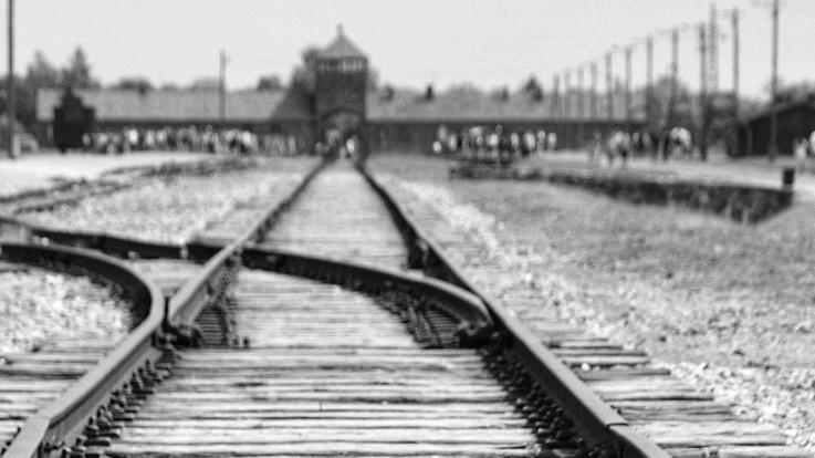 """Giorno della memoria, 75 anni fa la scoperta dell'orrore di Auschwitz. Papa: """"Mai più indifferenza"""""""