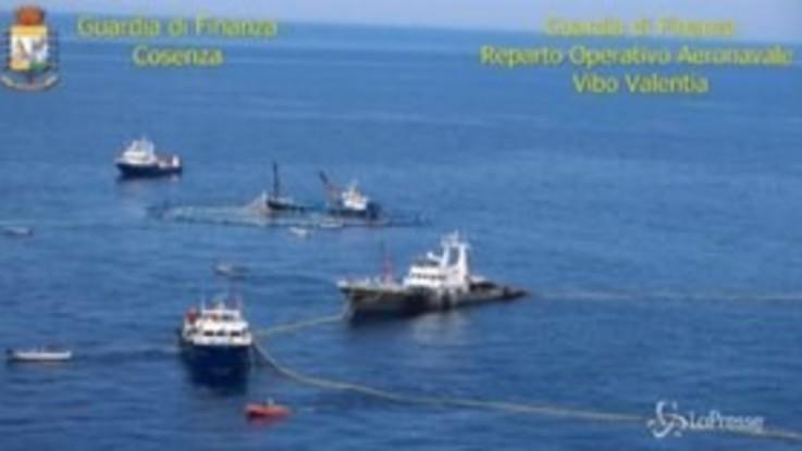 Cetraro, abbordaggio alle tonnare: 4 arresti