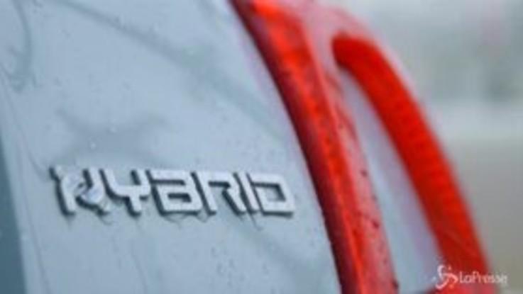 """Fiat, Santo Ficili: """"500 e Panda Hybrid prodotto giusto al momento giusto"""""""