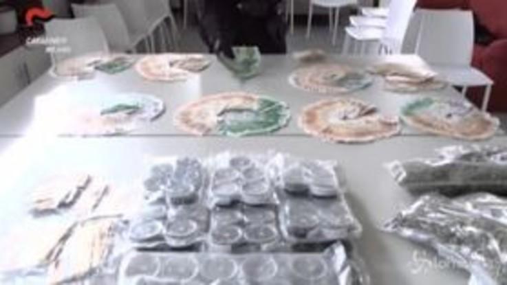 """Droga: coltivatore di cannabis light si """"autodenuncia"""", in casa aveva 100mila euro in contanti"""