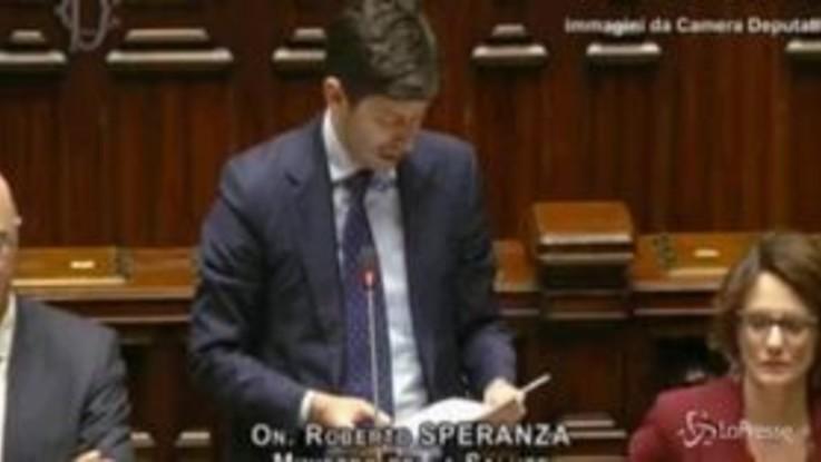 """Coronavirus, il ministro Speranza alla Camera: """"Dobbiamo fidarci dei nostri scienziati"""""""
