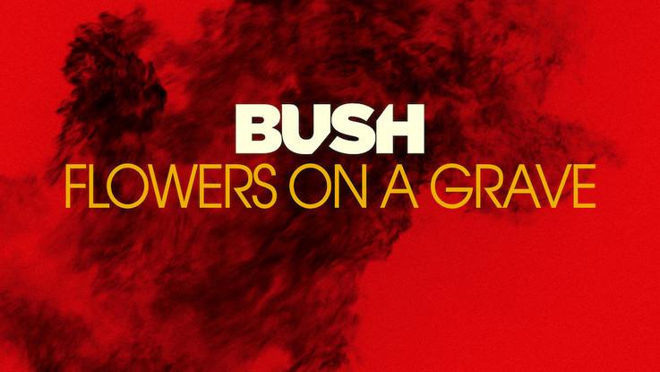 Bush: ecco il singolo 'Flowers on a grave'. A maggio il nuovo album 'The Kingdom'