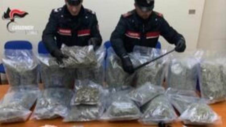 Sequestrati 16kg di marijuana a Torino: un arresto