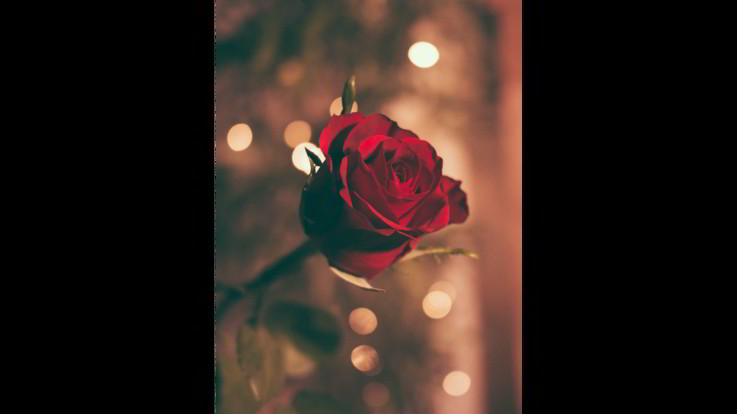 L'oroscopo di sabato 14 marzo, Sagittario: tempi lunghi per nuovo amore che sboccia