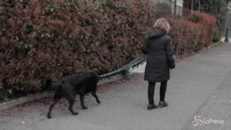 Coronavirus, a spasso con il cane. Se no rischio multa