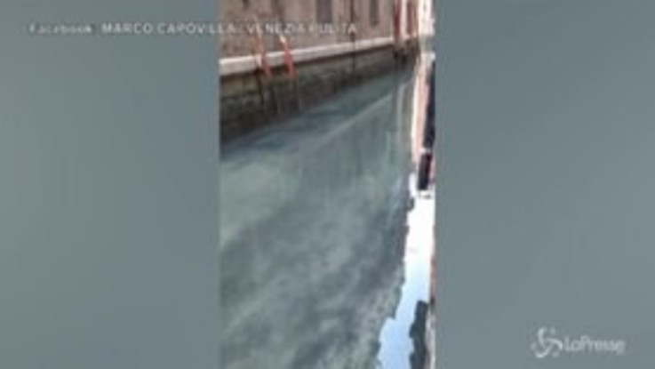Coronavirus: Venezia, le acque dei canali cristalline