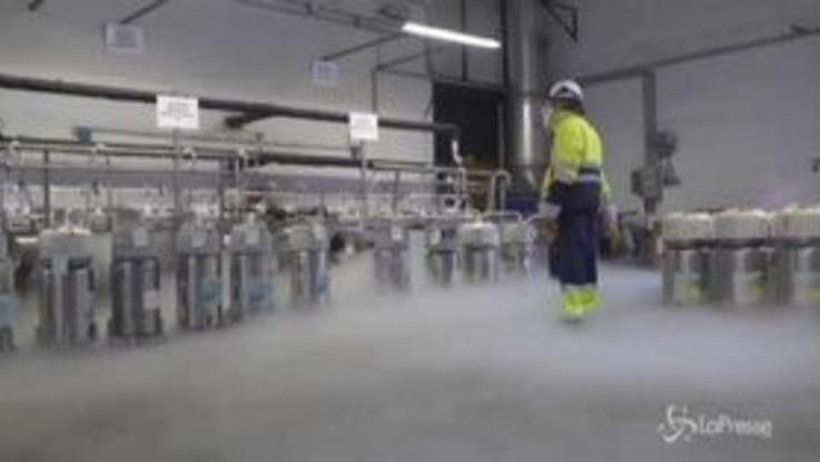"""Producono e distribuiscono l'ossigeno per Bergamo: """"Grande responsabilità, anche noi salviamo vite"""""""