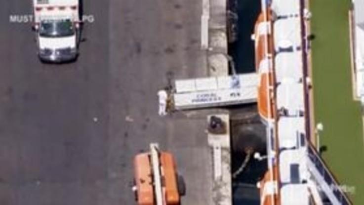 Coronavirus, Coral Princess attracca a Miami con due morti a bordo