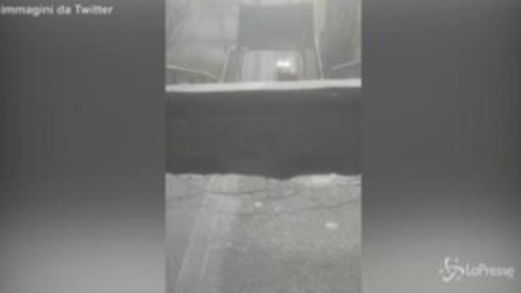 """Le prime immagini dopo il crollo del ponte di Albiano Magra: """"Scappate, c'è odore di gas"""""""