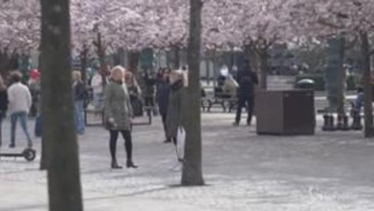 Nessuna paura del coronavirus, gli svedesi si godono il sole nel weekend pasquale