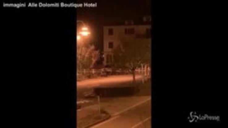 Trentino, nella notte un orso cammina a Molveno