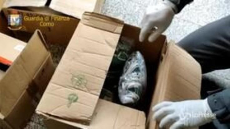 Como, false attestazioni su import mascherine: un arresto