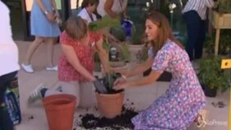 Gb, Kate Middleton aiuta i bambini a piantare alberi al Nook hospice