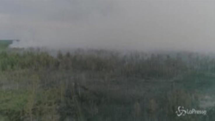 Russia: brucia la Siberia, gli incendi hanno distrutto oltre 1 milione di ettari di foresta
