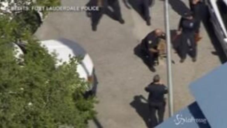 """Florida, un canguro """"arrestato"""" dalla polizia a Fort Lauderdale"""