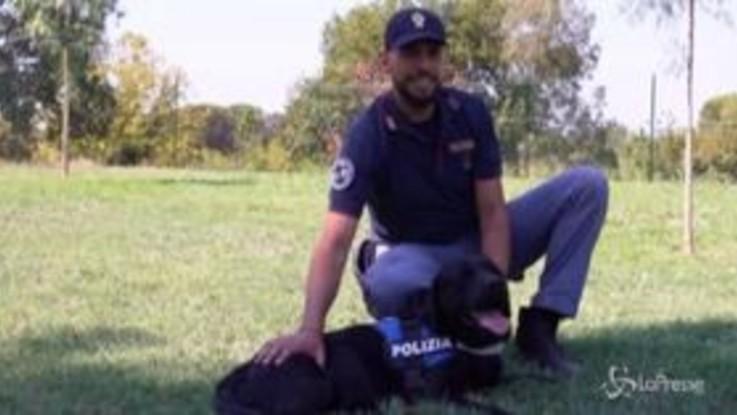 Estate e animali: la Polizia di Stato in campo contro gli abbandoni
