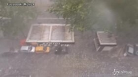 Bomba d'acqua e grandine su Torino, alberi caduti e allagamenti