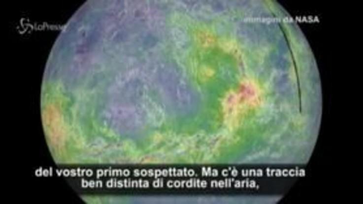 """Segnali di vita da Venere: """"Non è una certezza, ma è un indizio"""""""