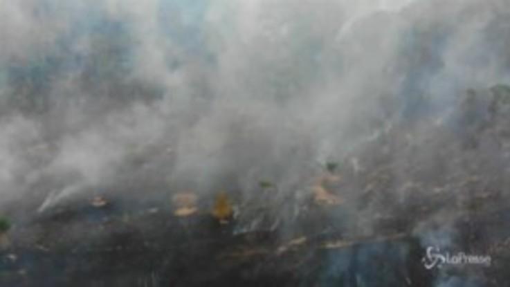 Brasile, roghi nella foresta Amazzonica: le immagini aeree