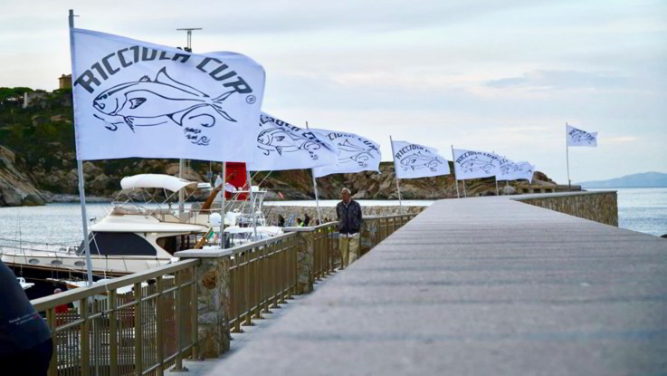 Al Giglio tutto pronto per la Ricciola Cup. Non si ferma la gara di pesca a traina più antica d'Italia