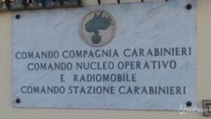 Catania: coltivavano 1200 piante di canapa, arrestati