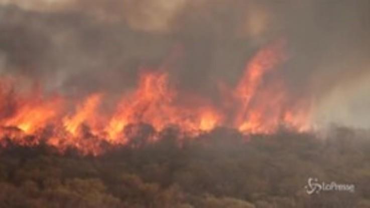 Argentina: abitanti e vigili del fuoco insieme contro la furia degli incendi
