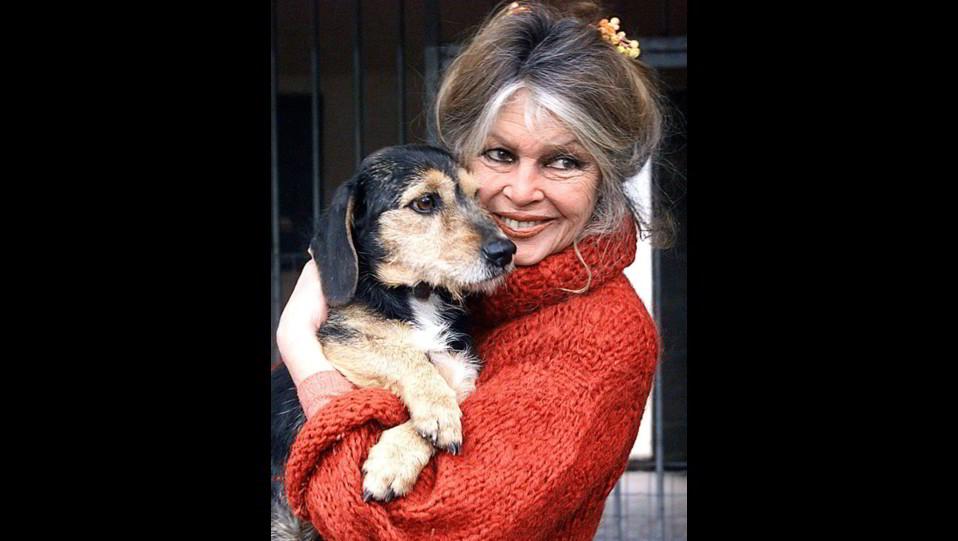 l'attrice Brigitte Bardot con uno dei suoi cani ©