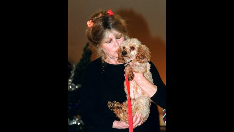 2002 - L'attrice Brigitte Bardot partecipa ad un evento per la raccolta di fondi a favore degli animali ©