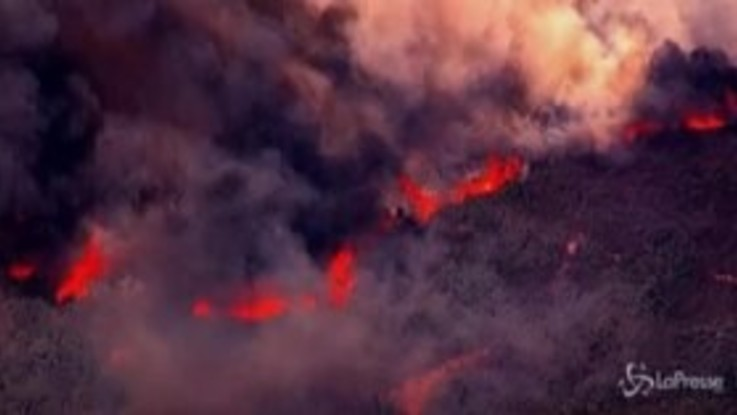 California: la Napa Valley invasa dalle fiamme