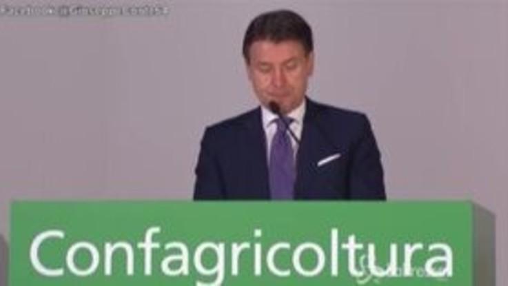 """Conte: """"Settore agroalimentare sarà protagonista del rilancio del Paese"""""""