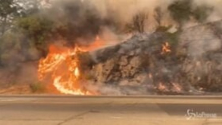 Incendio in California: la Napa Valley combatte contro il 'Glass Fire'