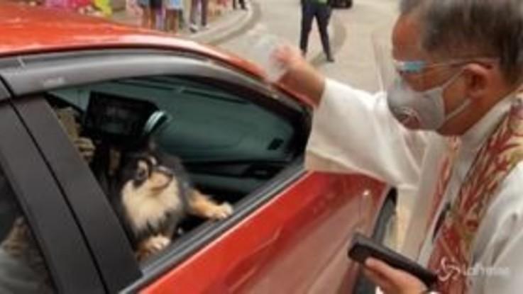 Filippine, benedizione degli animali per la festa di San Francesco