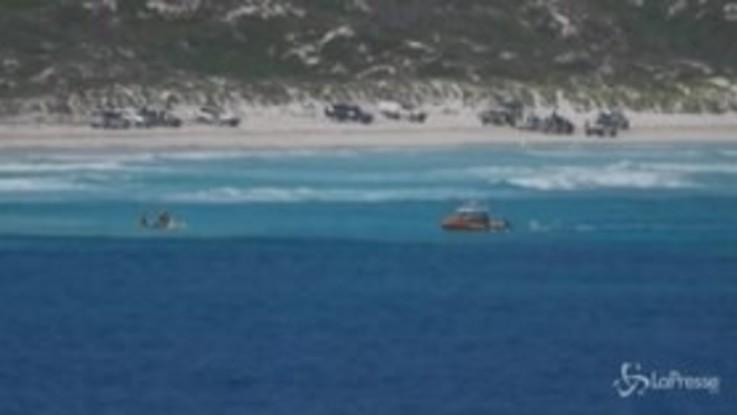 Australia, surfista scomparso sulla costa di Wylie Bay