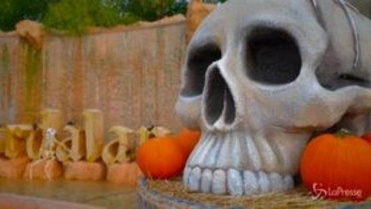 "Gardaland riparte con il Magic Halloween, l'ad: ""Eventi in totale sicurezza"""