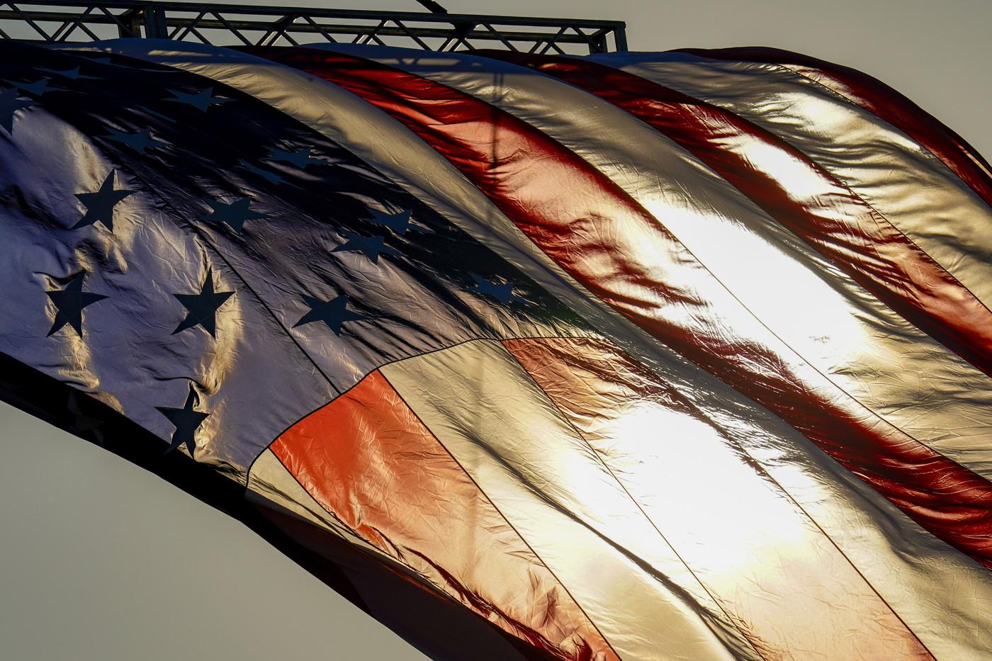 Usa 2020, guida al voto: primarie e grandi elettori, così si elegge il presidente