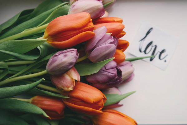 Oroscopo di sabato 1 maggio, Vergine: novità in amore