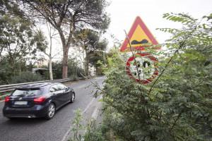 Aurelia, cartelli con il limite di velocità a 30 km/h
