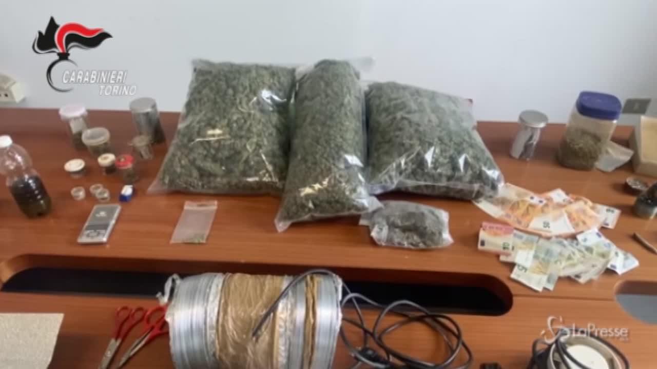 Torino, sequestrati oltre 3 Kg di stupefacenti