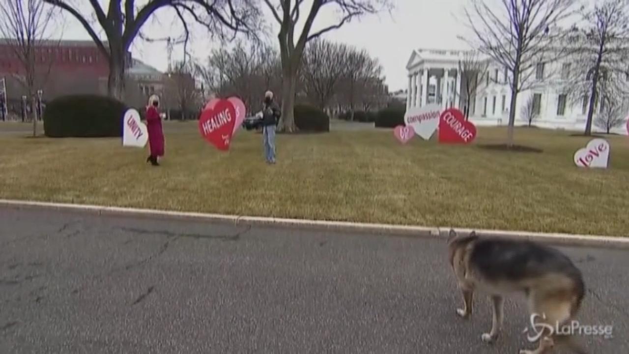 Cuori davanti alla Casa Bianca: il messaggio di Joe e Jill Biden per San Valentino
