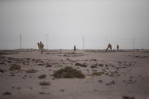 Sahara, Bourita: Europa esca da comfort-zone e sostenga iniziativa Marocco
