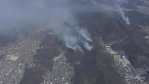 Bruciano le foreste a nord di Tokyo